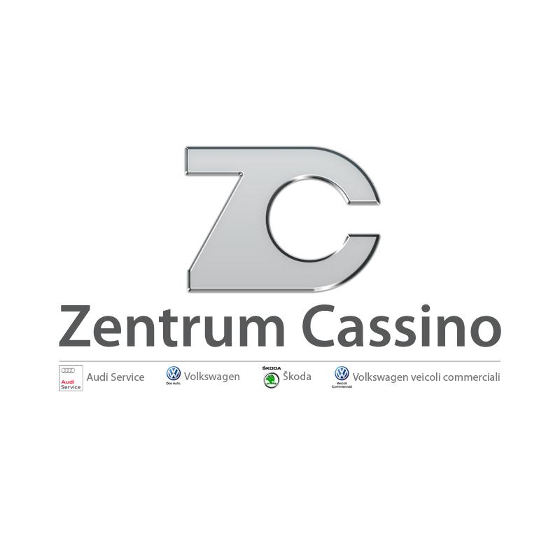 2013 – Logo – Zentrum Cassino – Audi Service